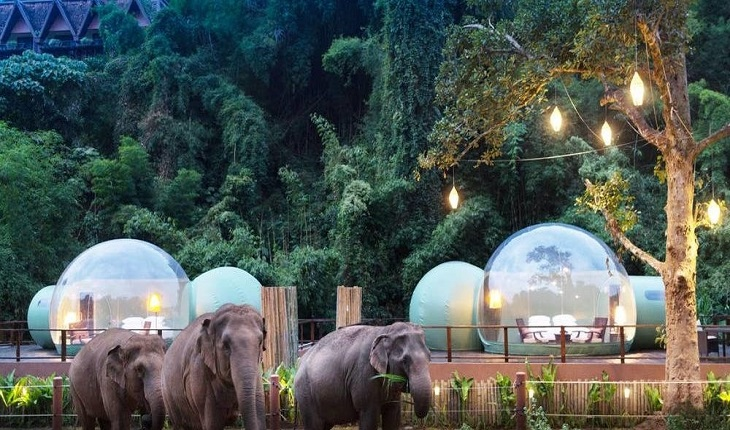 Au Naturel! Anantara Elephant Resort Transparent Jungle Bubble Rooms