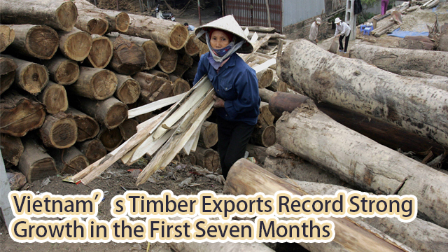 Vietnam's Timber Exports Record Strong Growth in the First Seven Months